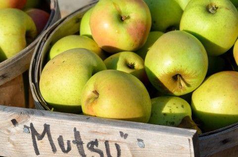 糖質制限りんご